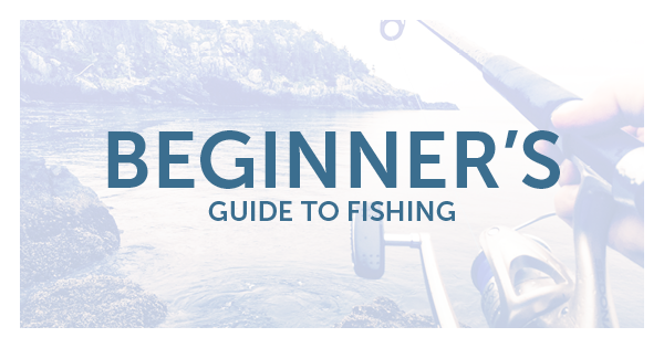 Beginner 39 s guide to fishing american heirtage insurance for Beginners guide to fishing