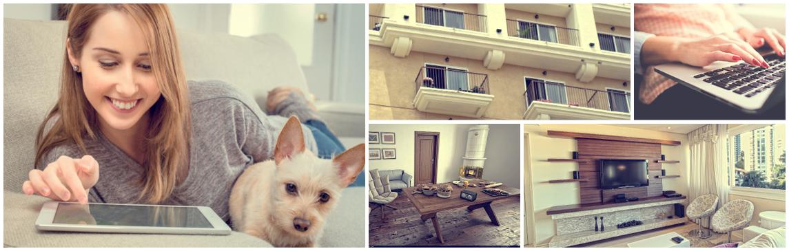 Renters Insurance, Dog, Woman, Tablet, Smiling, Living Room, TV, Table, Door, Laptop, Apartment, Windows, Renters